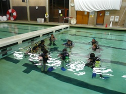 Open Water POOL SESSION for eLearning Students