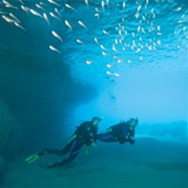 PADI Open Water Specialty Instructor