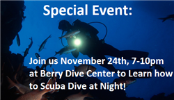 Night Diver Experience